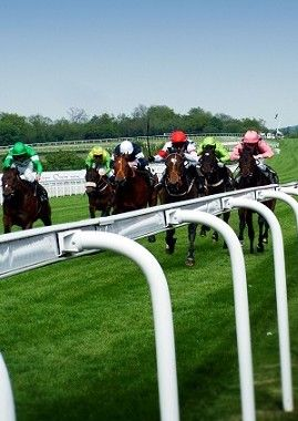 Daily Horse Racing Price Boosts