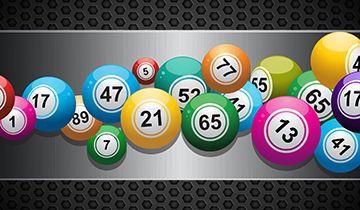 bingo back