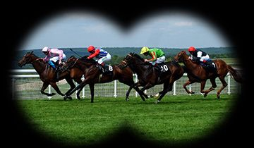 horse racing at bet365