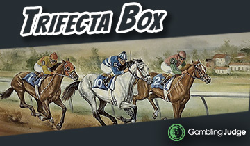 Trifecta box horse betting best online sport betting sites